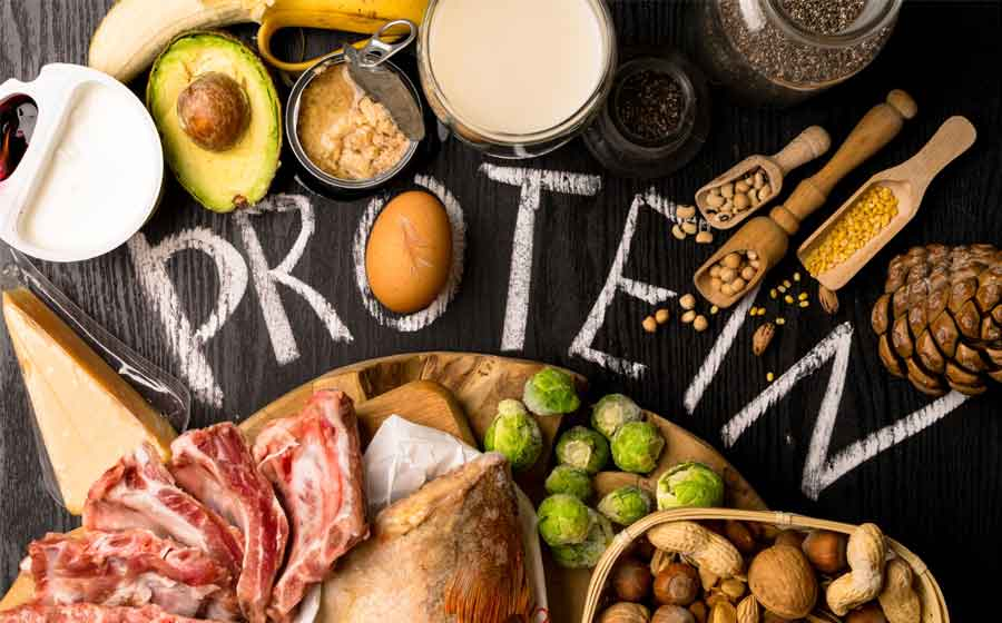 Nutrition Rule #2 :Eat Enough Protein