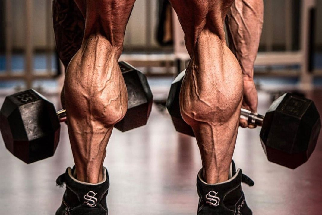 Best Calf Workouts You Can Do At The Gym Fititnow