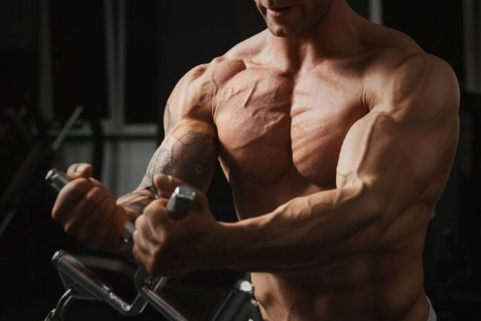 The Only Chest Workouts You Need to Do At The Gym 2019