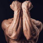 forearm workouts